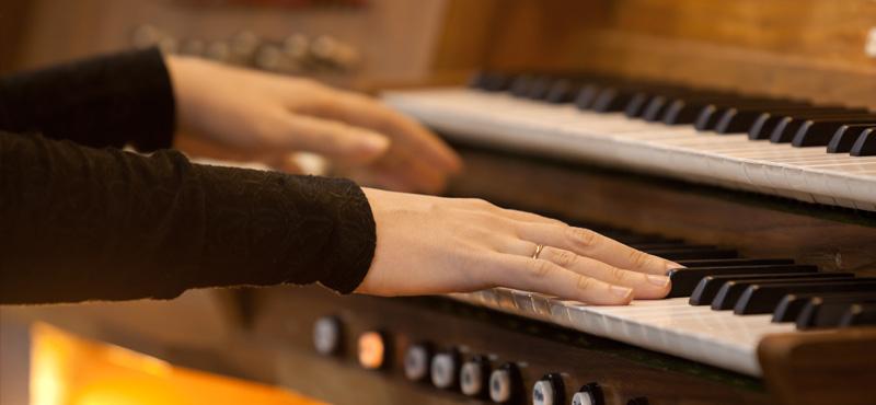 organo e composizione